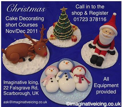 Christmas Cake Decorating courses November December 2011