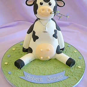 Moo Cow Christening Cake - Naming Day - 1st birthday Cake